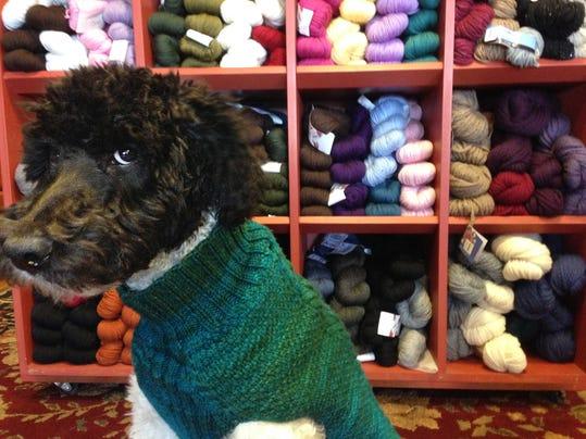 Crafts-Dog Coats_Youn.jpg