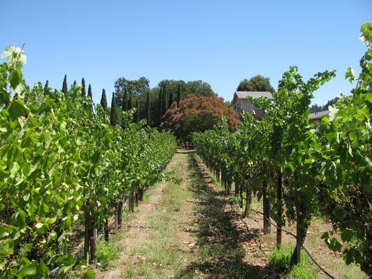 REN0716 SIP DeWitt Wine MAIN.jpg.JPG
