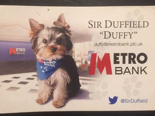 A business card identifies Sir Duffield, the Yorkshire terrier of international banker Vernon Hill II of Moorestown.
