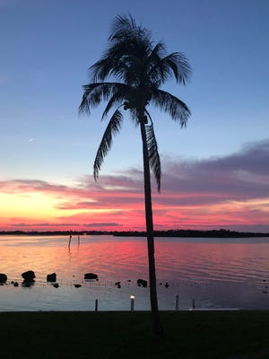 Dr. Mike Ronsisvalle took this photo while on vacation with his family in the Keys recently.