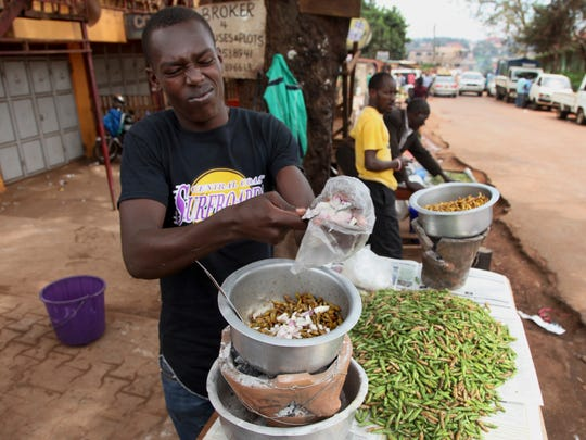 "In this photo taken Friday, Nov. 25, 2016, Patrick Magezi cuts an onion into a saucepan frying edible grasshoppers, at a stall in the Kamwokya district of the capital Kampala, in Uganda. Grasshoppers, known in the local Luganda language as ""nsenene,"" are a delicacy among millions in this East African during the rainy season. Fried grasshoppers have become a lucrative trade and businesses around the nation are making the most of the demand for the crunchy critters."