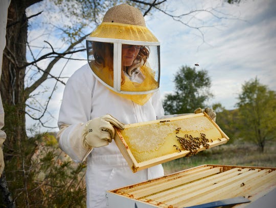 On Sunday, beekeeper Amanda Loewen lifts a comb out