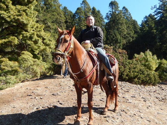 Michigan State University entymologist David Mota-Sanchez heads for the Sierra Chincua monarch butterfly sanctuary in Mexico on horseback on Feb. 23.