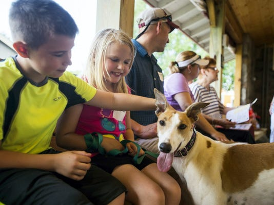 "Braeden Skibicki, left, 9, and his sister, Kayley Skibicki, 7, pet their newly adopted Greyhound, two year-old Carolina on Saturday at the 20th annual Personalized Greyhound Inc. picnic at Adams County Winery in Franklin Township.  The Skibicki family of Hanover have been waiting years to adopt a Greyhound for a pet until they met Carolina, who they adopted on Saturday at the picnic. ""We we're just waiting for the kids to get old enough,"" said dad Bill Skibicki, who was a former Greyhound owner."