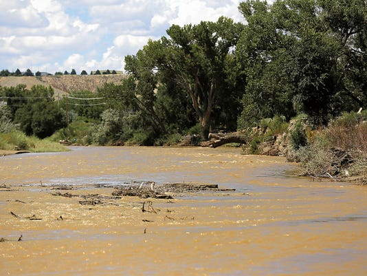 The Animas River is seen Saturday near its confluence with the San Juan River in Farmington.