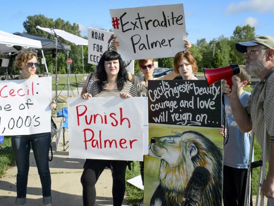 Demonstrators gather outside the dental practice of Walter Palmer, who returned to his practice, Tuesday, Sept. 8, 2015, in Bloomington, Minn. Palmer, after weeks out of the public eye, was the subject of an international uproar after he was identified as the hunter who killed the famous lion Cecil, in Zimbabwe. (Glan Stubbe/Star Tribune via AP)  MANDATORY CREDIT; ST. PAUL PIONEER PRESS OUT; MAGS OUT; TWIN CITIES LOCAL TELEVISION OUT
