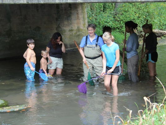 Children and adults catch crayfish and other aquatic life in Middle Spring during Stream Awareness Day Saturday. The event sponsored by the Middle Spring Watershed Association included a duck derby and other stream-related activities.