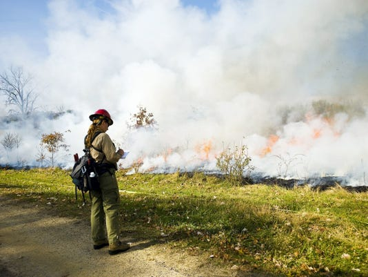 A National Park Service fire specialist observes a section of a past prescribed burn at Gettysburg National Military Park on the land at Synder Farm on Oct. 30, 2013.  File - The Evening Sun