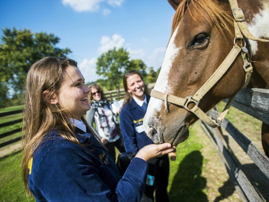 Gettysburg High School junior and FFA member Olivia Staub pets an American Paint horse on the Arentz Family Farm on Thursday while senior Ashlyn Buckholder and Steph Williams, background, watch after the 25 year anniversary celebration of the Adams County Agricultural Land Preservation Program.