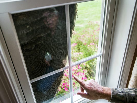 Calvin Plunkert points Sept. 30 at a hornet's nest that was constructed on the outside the window of his West Manheim Township home this summer.
