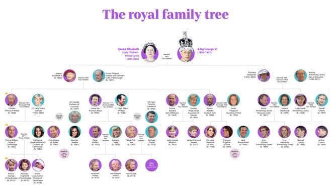 Royal tree promo