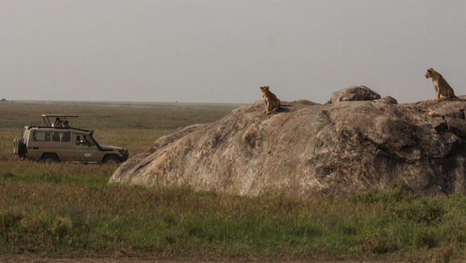 Tourists on safari in Tanzania.