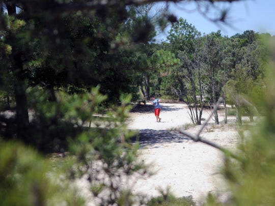 Another group of disc golfers takes a throw at the Cape Henlopen State Park course.