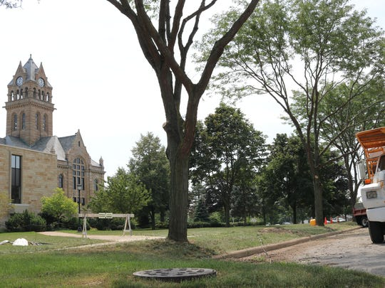 Councilman Gabe Below, of Port Clinton, expressed disappointment after several city-owned trees were cut down near the county courthouse despite local ordinances.