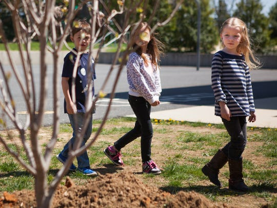 Emma Peeden, 7, right, walks with her classmates around the dogwood tree they helped plant at McSwain Elementary in April 2015.