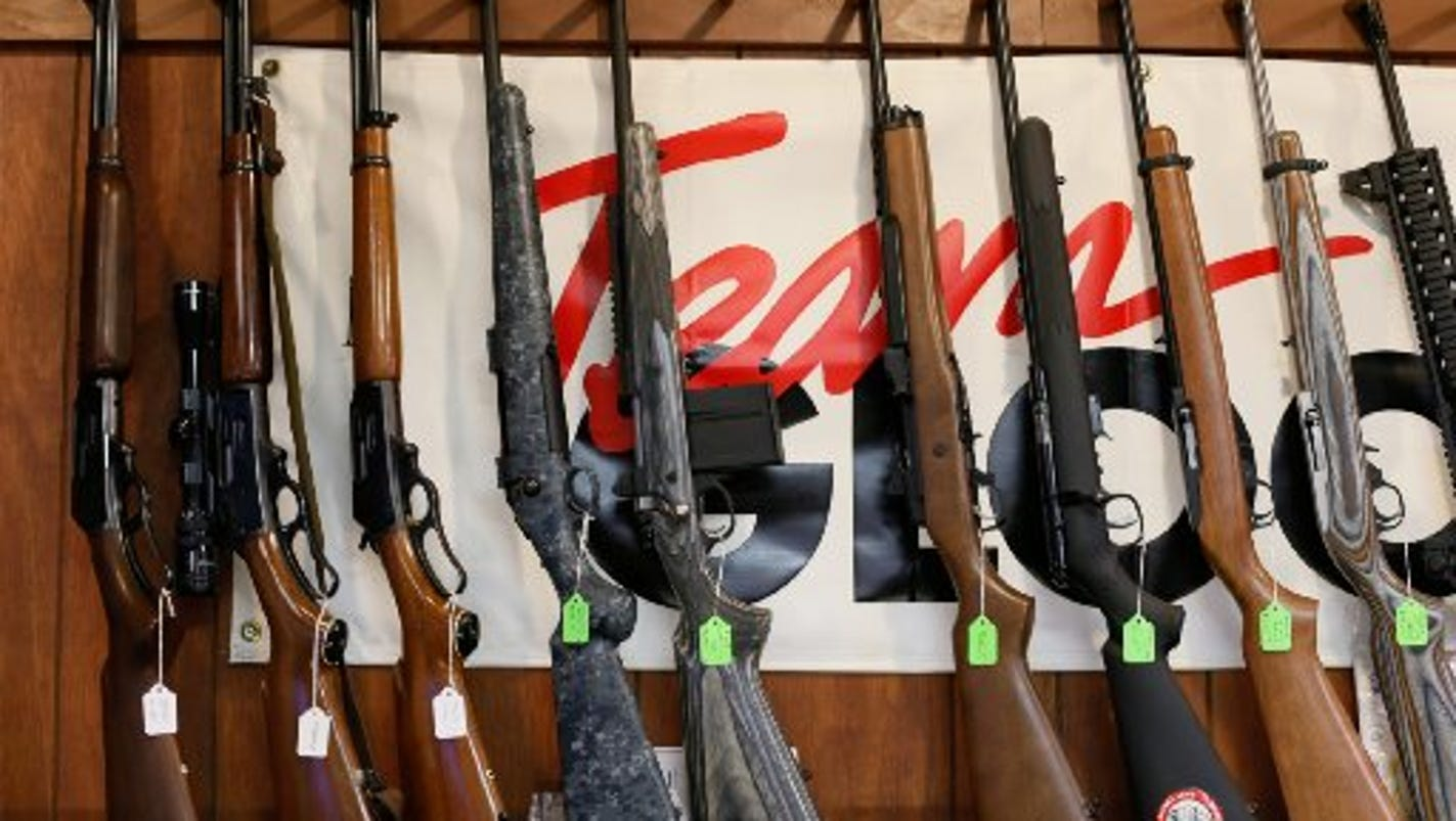 Bill allowing taking guns from unstable people may get hearing in Lansing