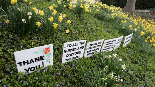 Thank you signs dot a hill filled with daffodils on Pondfield Road in Bronxville, in the shadow of New York Presbyterian Lawrence Hospital in Bronxville, April 7, 2020.