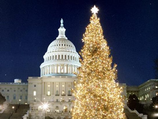 The 1989 Capitol Christmas Tree came from Montana and