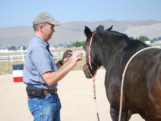 Veteran Joe Evans works with a horse in ground training during a session at Sierra Nevada Horses and Heroes.