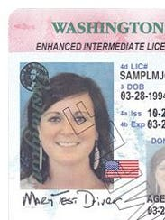 washington state enhanced drivers license flying