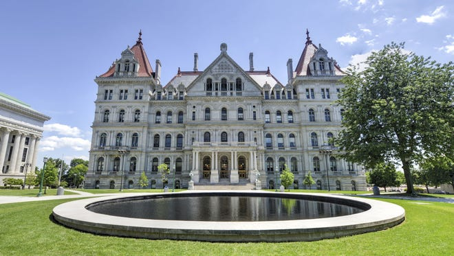 New York will vote in November on whether to hold a Constitutional Convention, whether to allow judges to alter corrupt officials' pensions and whether to change Adirondack Park 'Forever Wild' regulations.