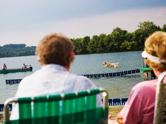 Watch dock dog demonstrations, take a pontoon ride