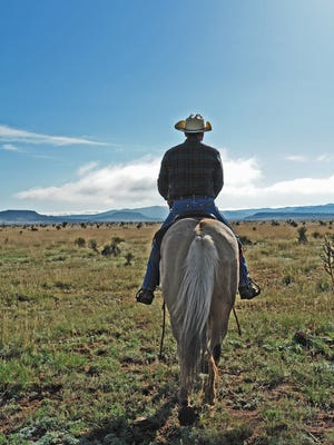 """The term """"marital bliss"""" used during any monent of working cattle at the ranch is said only with the greatest sarcasm."""