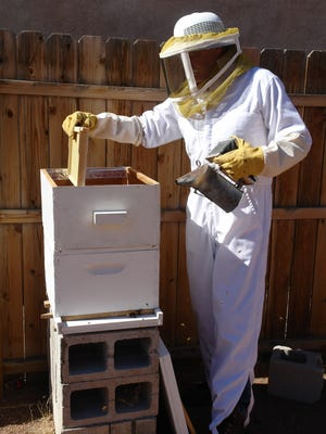 It's the season for fighting honeybees. Not something that would immediately come to mind when you think about cowboys, but then, there is a long list of things that cowboys do just because it needs doing.