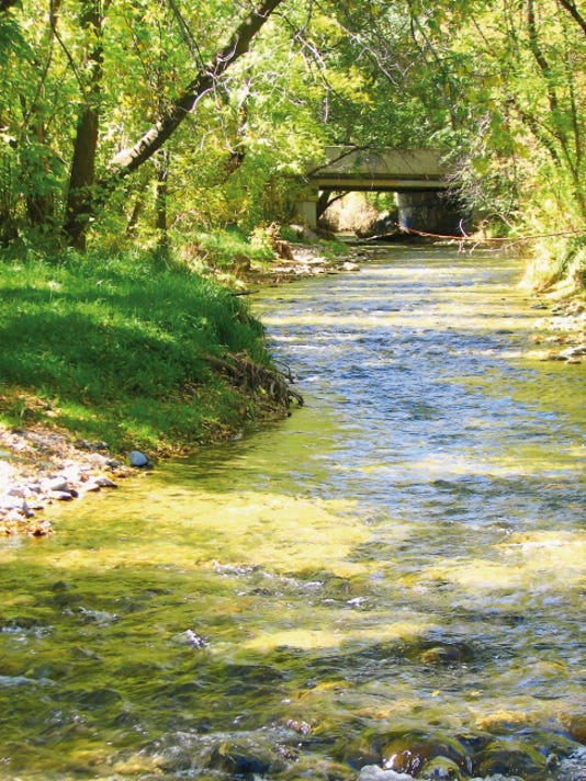 Stream flow is lower than normal on the Rio Ruidoso, but still creates a peaceful bit of scenery.