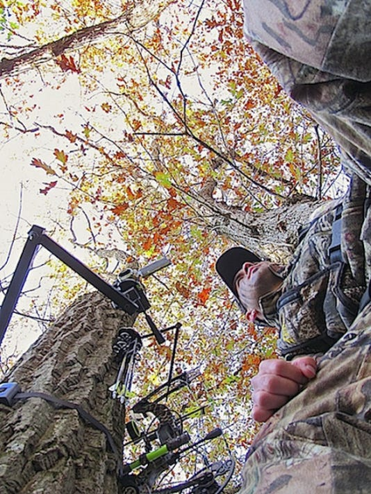 Bowhunting from a tree stand is the author's preferred method of choice, as it elevates hunters above a deer's line of sight, while helping to conceal scent and movement.