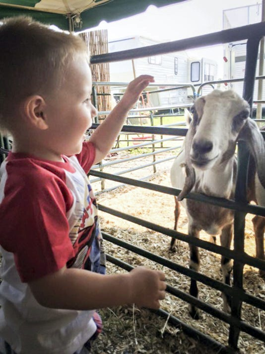 "This photo of Zayden Carter petting a goat was submitted to the Lebanon Daily News by Kristin Tomecek for our Community Journalism photo collection this summer. This photo's theme was ""Summer at Play."" This week we are collecting photos on our Facebook page (www.Facebook.com/ldnews) or on Instagram (@lebdailynews) to fit the theme ""Dog Days of Summer."" Photos chosen from those submissions will be published next week, and all photos submitted go on our Pinterest page."