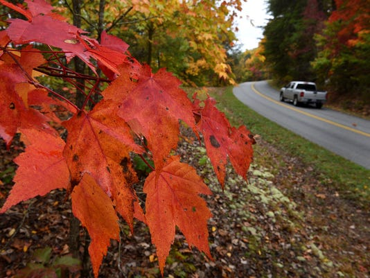 fall-foliage-091517-2