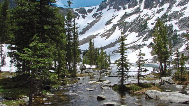 Lion Lake looking southwest in early July near the outlet stream. Much of Lion Lake remained ice covered with a few winter-kill fish near the shore in this photo Leroy Friel snapped in the Pioneer Mountains.