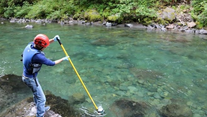 Hans Daubenberger extracts a water sample at the Duckabush River below Collins Campground in Jefferson County as part of the Port Gamble S'Klallam Tribe's implementation of a regional Pollution Identification and Correction program in Hood Canal. Mason County, Kitsap County and the Skokomish Tribe also partnered in the project spearheaded by the Hood Canal Coordinating Council.