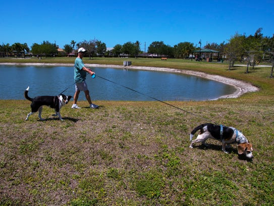 Steve Paulding walks his dogs, Sophie and Lilly, during