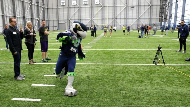 """In this photo taken Monday, Feb. 29, 2016, Blitz, the Seattle Seahawks NFL football mascot, competes in the shuttle run as he takes part in the Inaugural Seahawks.com Seattle Media Combine at the team's NFL football practice facility in Renton, Wash. Booth and other media representatives competed in the 40-yard dash, the vertical and broad jumps, the three-cone drill, the shuttle run and a football pass-catching drill called """"the gauntlet."""""""