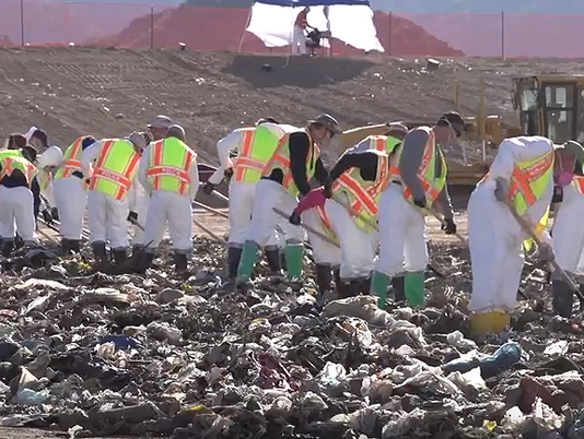 Landfill search