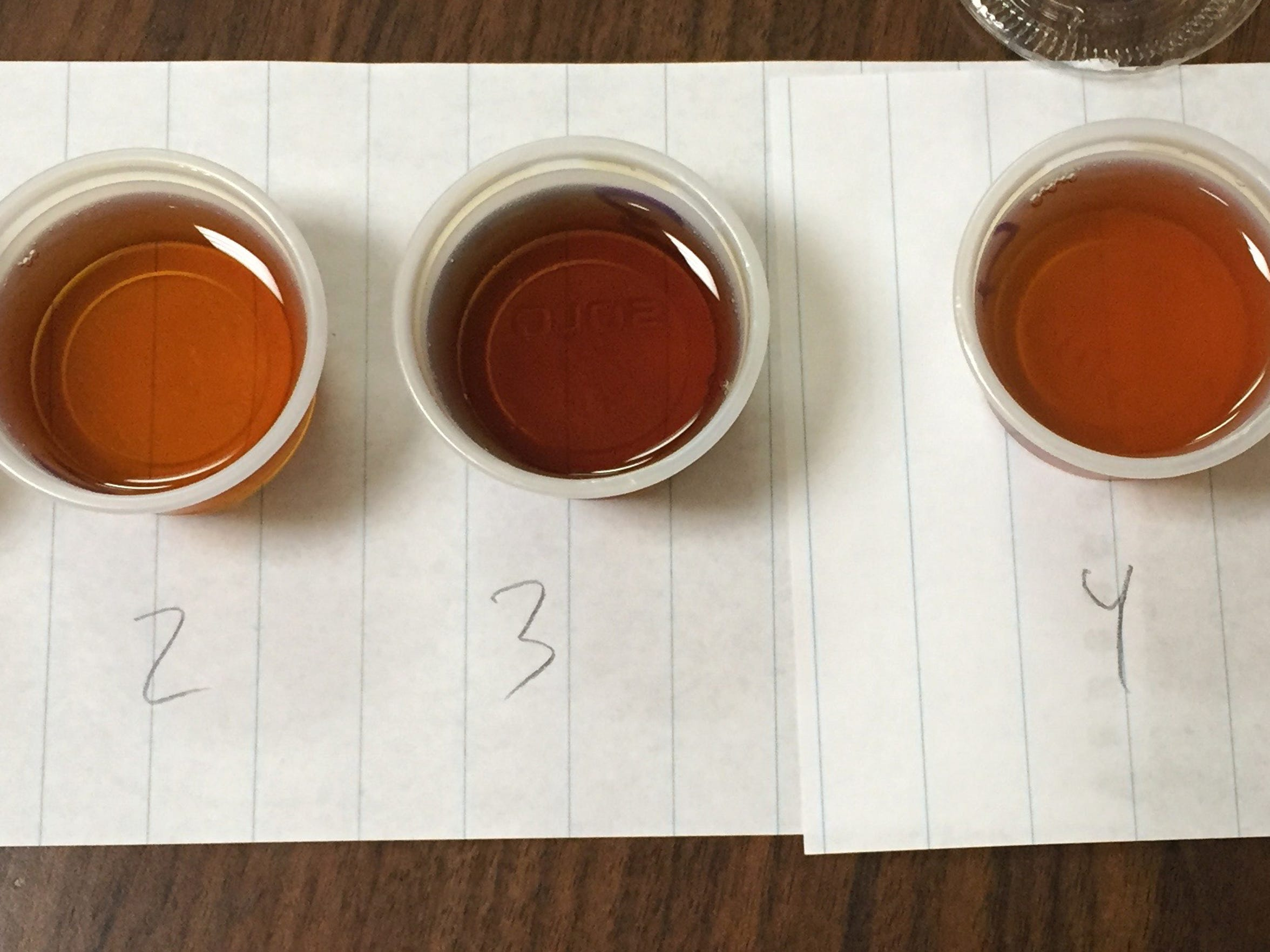 A News Leader blind tasting of Highland County maple syrup.