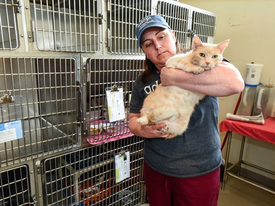 Laura Lund, animal care manager, checks on Mary, who