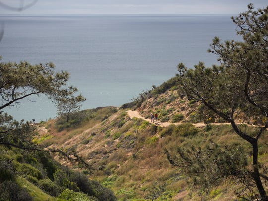 Hikers make their way up the trail at the Torrey Pines