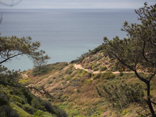 Hikers make their way up the trail at the Torrey Pines Natural Reserve in La Jolla, Calif. on Mon. April 3rd, 2017.