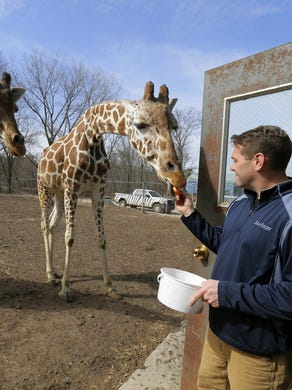 2017: Jason Holloway of Metuchen, elephant supervisor, feeds carrots to Noel, a 15-year-old giraffe, and Georgia, a 23-year-old giraffe, at Six Flags Great Adventure and Safari in Jackson, NJ Monday February 27, 2017.