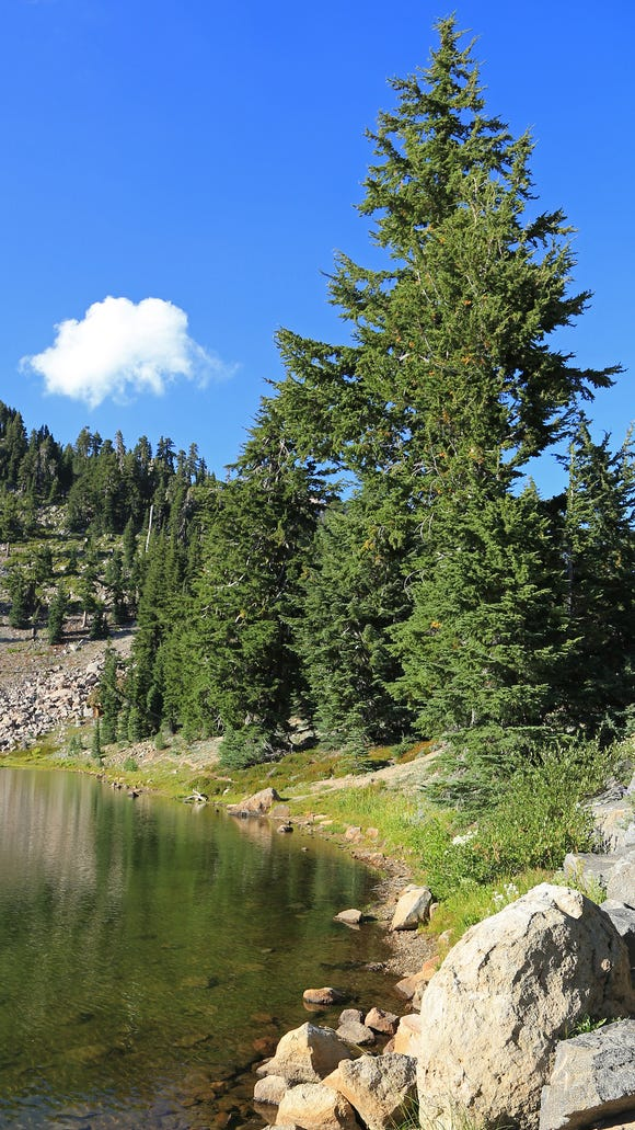 Trees reflect in Emerald Lake at Lassen Volcanic National Park in northern California.