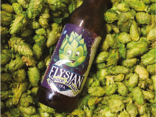 A bottle of Elysian Space Dust IPA, with its picture of a hop in outer space, displayed in a pile of green hops.