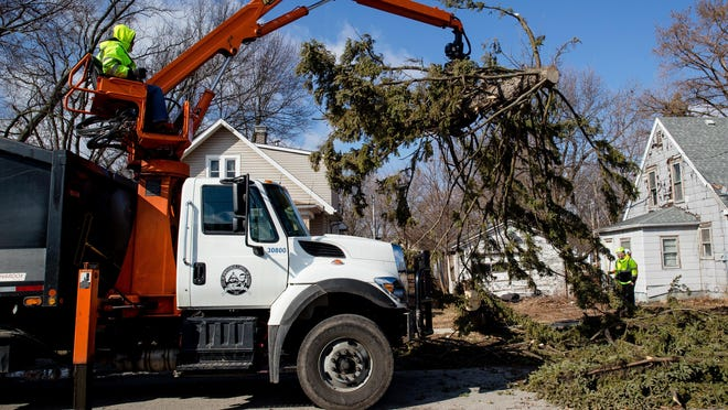 Springfield Public Works employees work to remove a large pine tree that was blocking a street after it was blown down by high winds recently.