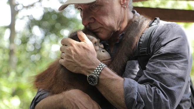 """A """"timeless hero of the silver screen,"""" it is in fact Harrison Ford's heroic devotion to the planet that has earned him the 2018 Jane Alexander Global Wildlife Ambassador Award, created by the Indianapolis Prize. Here Ford is interacting with an orangutan while working in the field."""
