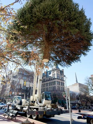An operator for Jackson Cranes lift the York Christmas tree from a trailer onto its base in Continental Square Monday, Nov. 23, 2015. The 30-foot blue spruce was donated by Sally and Earl Fringer of New Salem. A tree lighting will take place during the Light Up Night celebration Dec. 4, featuring activities around downtown, musical performance and Santa's arrival. The event runs 5 p.m. to 8 p.m.