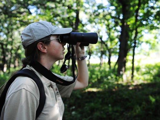 Courtney Adair, a seasonal naturalist at Good Earth State Park with South Dakota Game Fish and Parks, scans the trees for birds while hiking with members of the Sioux Falls Bird Club during a Birding Blitz hike on Sunday, Aug. 24, 2014, at Good Earth State Park southeast of Sioux Falls.