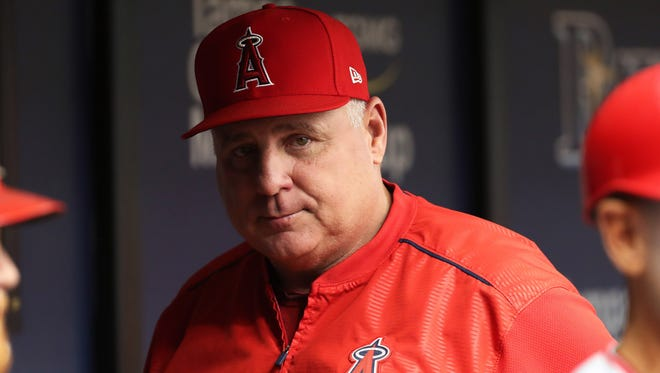 Los Angeles Angels manager Mike Scioscia (14) looks on against the Tampa Bay Rays during the first inning at Tropicana Field.