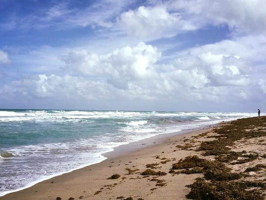 BEACH DYNAMICS - The next Beach Dynamics program takes